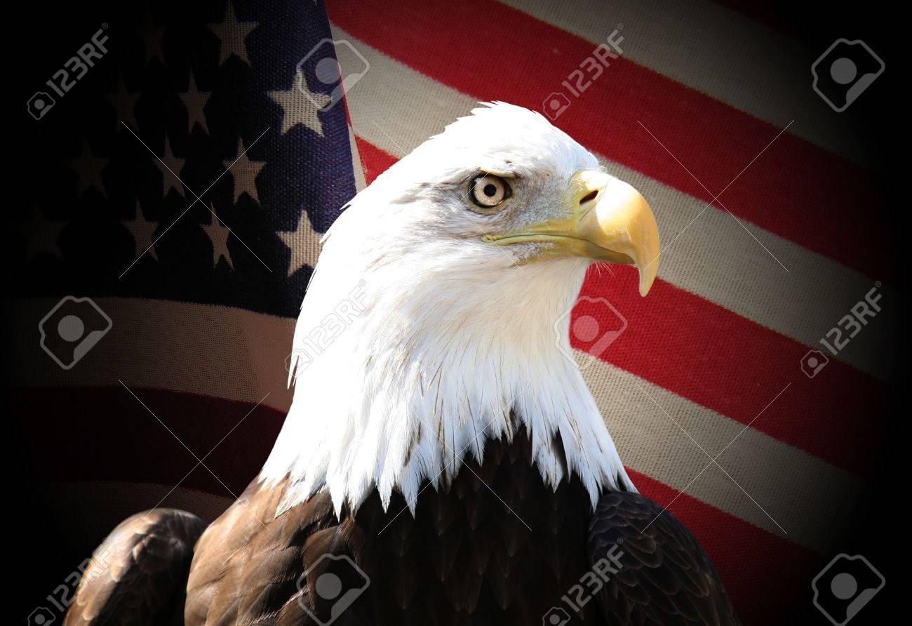 Bald eagle over flag Stock Photo - 477323