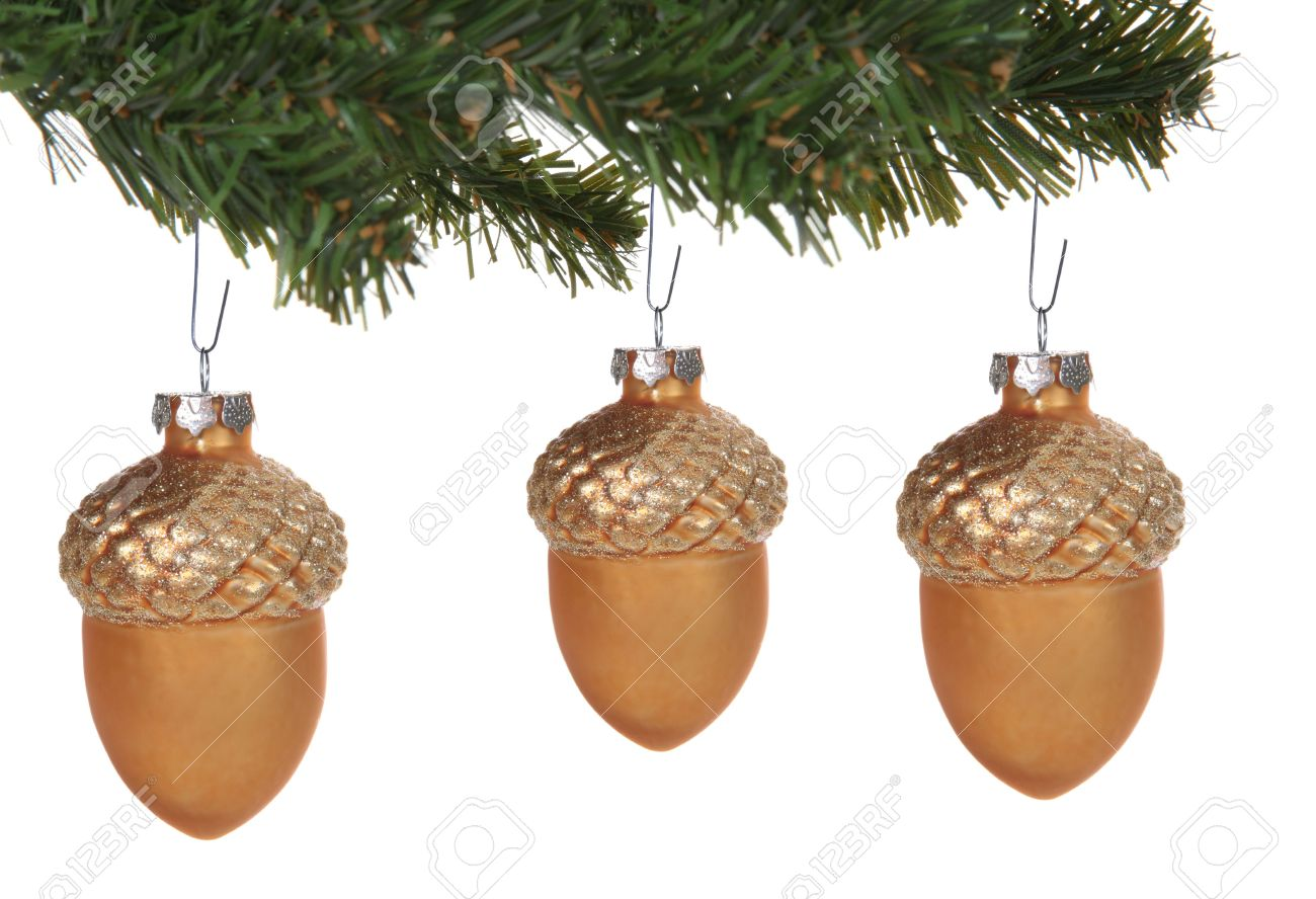 Acorn Christmas Ornaments Hanging On The Tree Stock Photo, Picture ...
