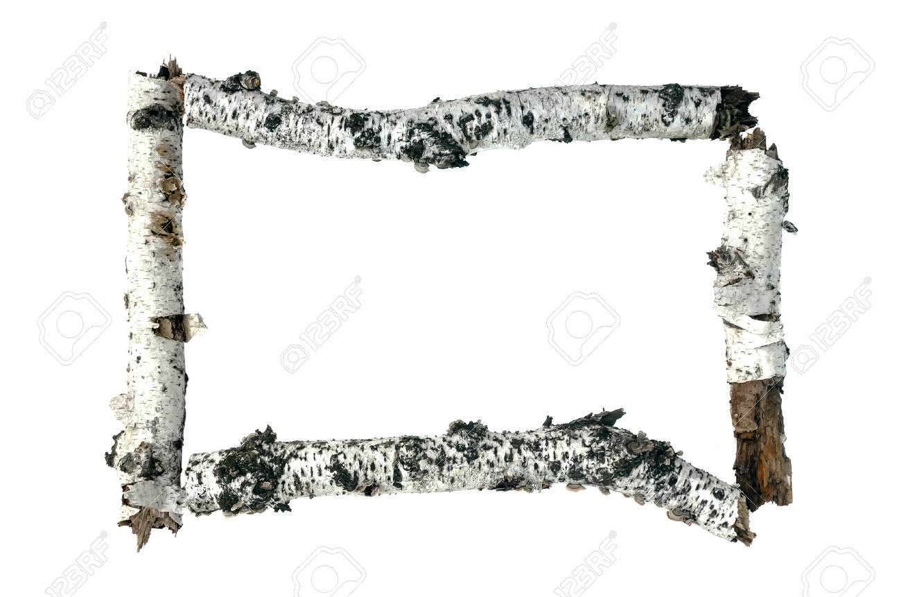 Dry Birch Tree Branch Frame Border Isolated On White Background ...