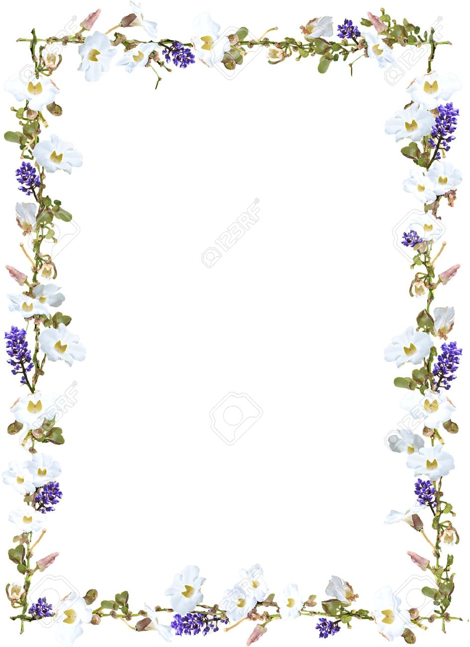 94 Garden Border Background Secret Frame Flower