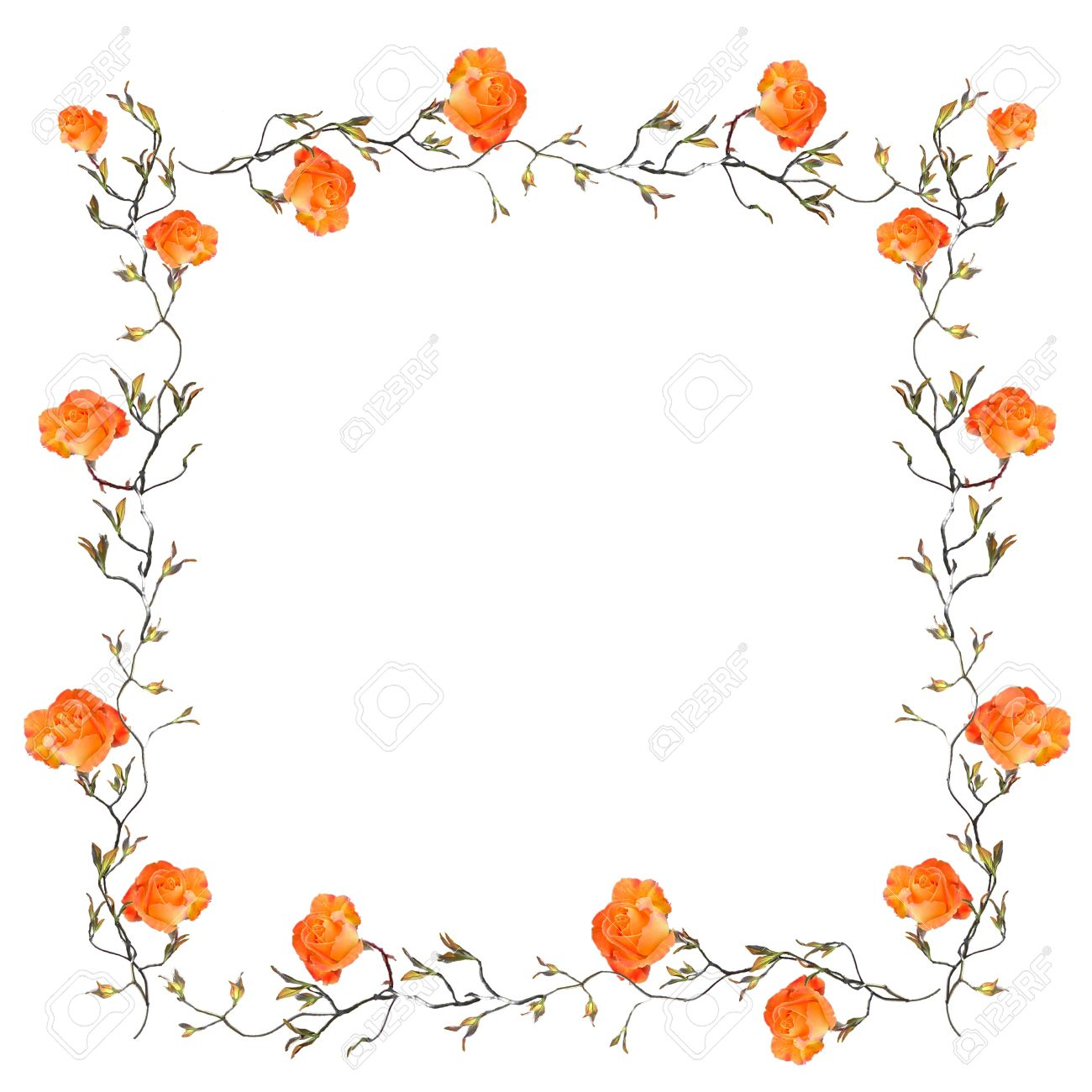 Orange Floral Border With White Copy Space Stock Photo