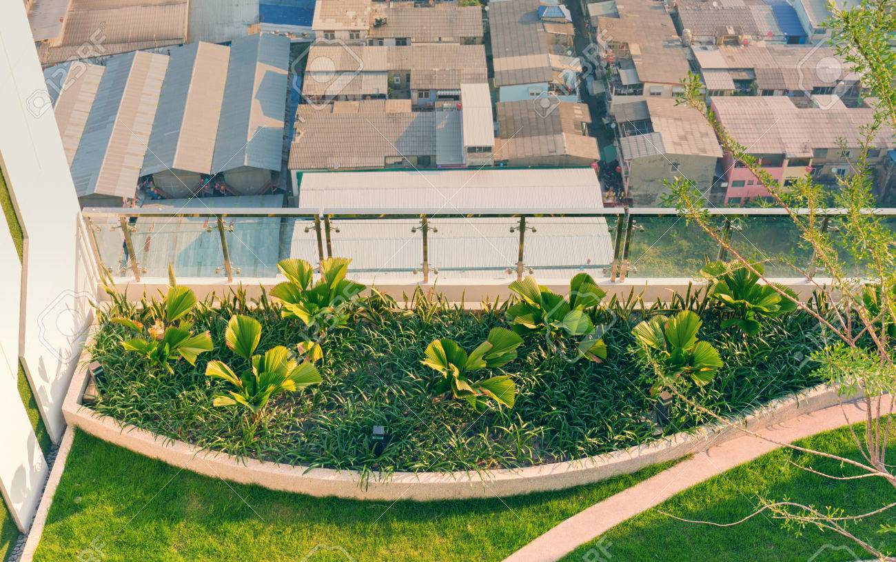 Top View Of Rooftop Ornamental Garden In Urban Setting Stock Photo