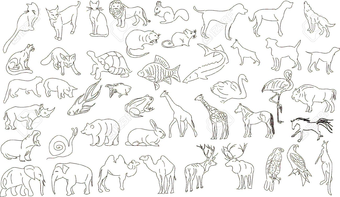 set of vector animals rough outlines stock vector 5264462 - Animal Outlines