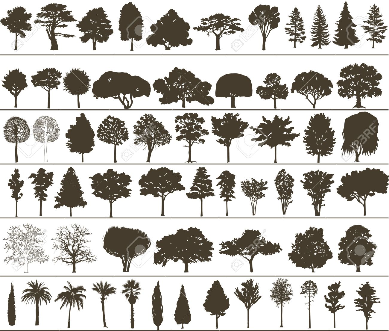Set of silhouettes of vector trees Stock Vector - 6354508