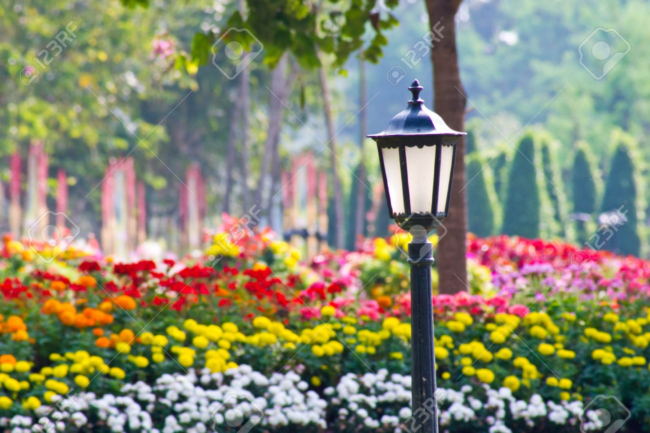 Old Garden Lamp In Public Park ,colorfull Flower Is Background ... for Flower Park Background  585ifm