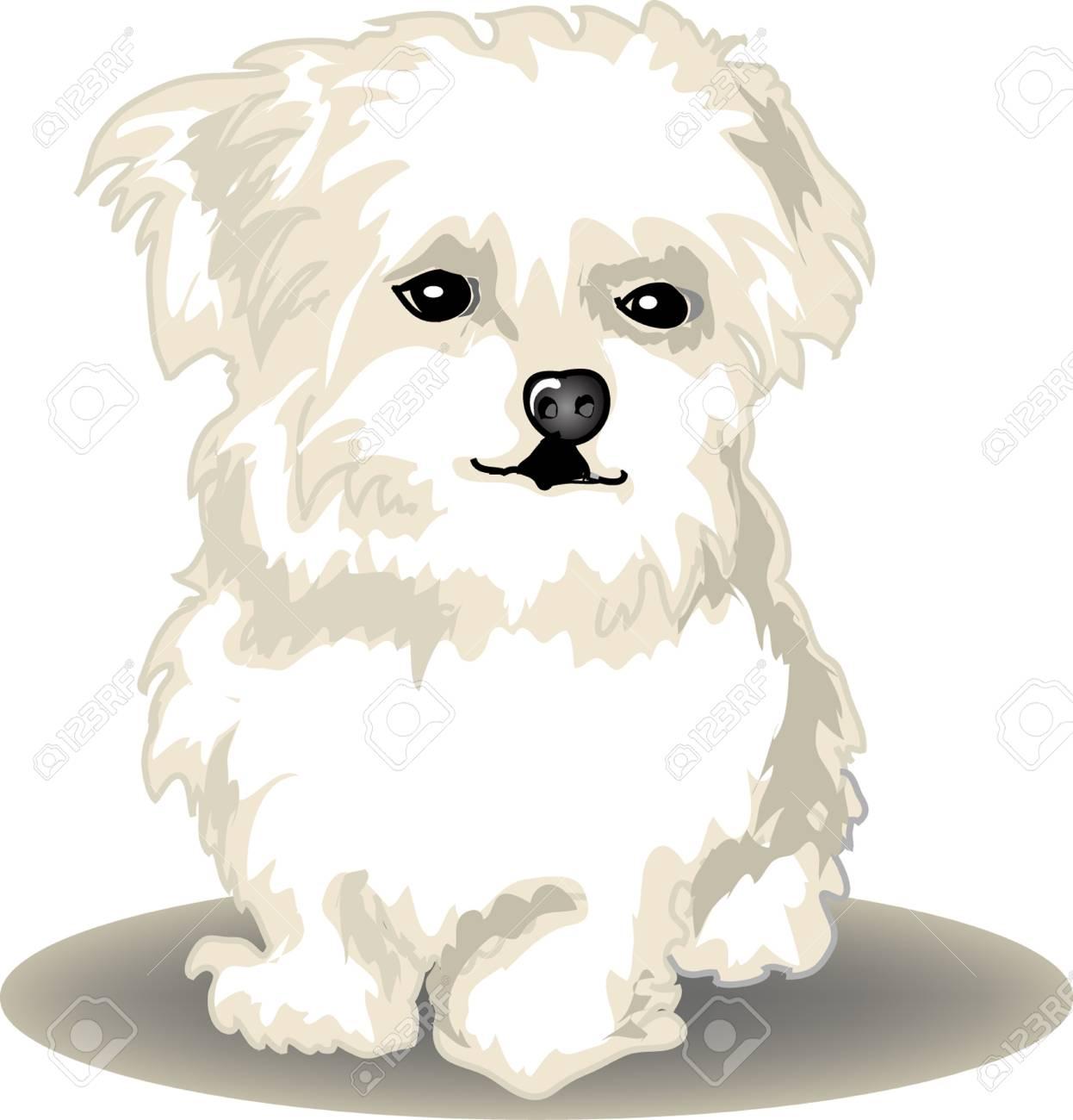 Cute puppy Stock Vector - 11783535