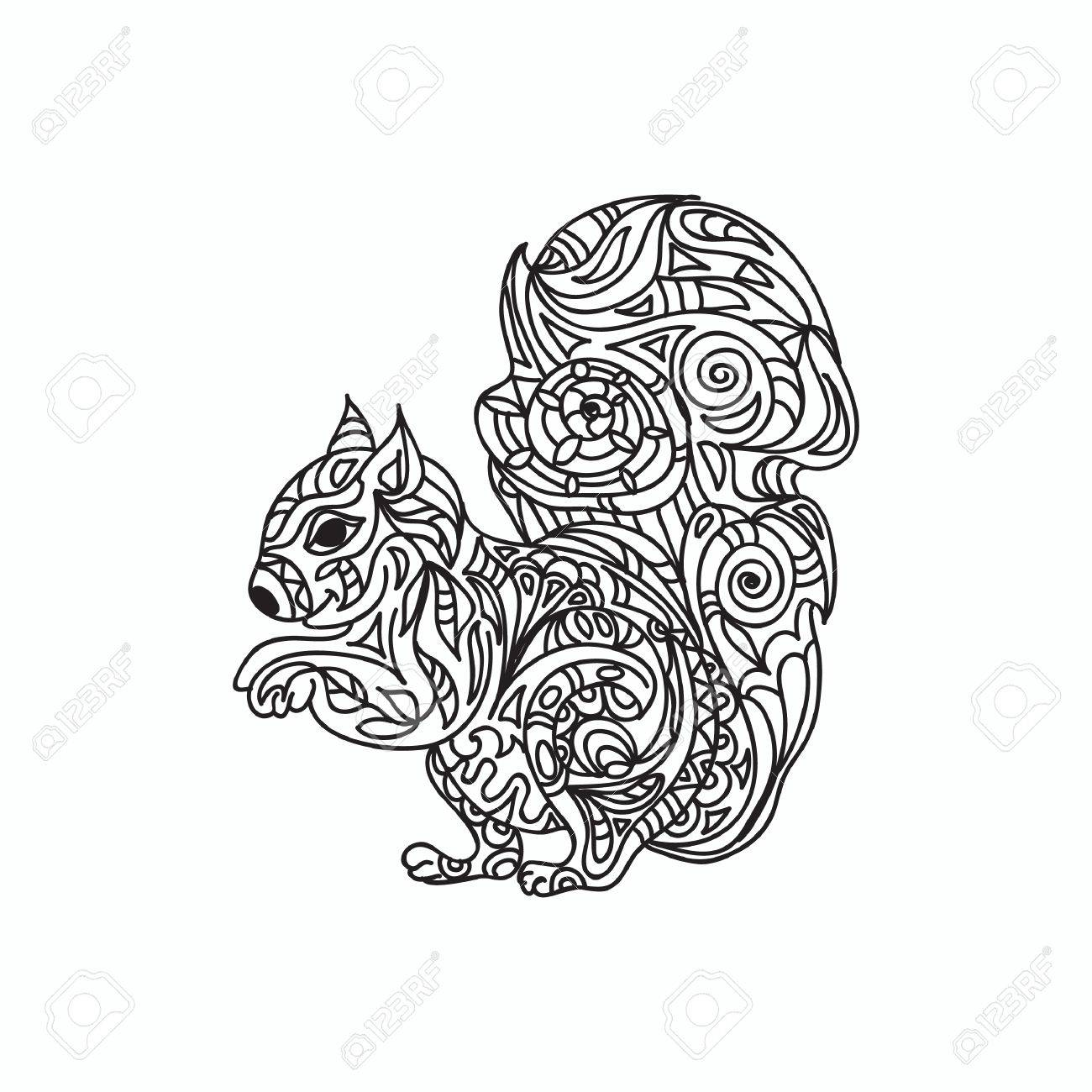 Squirrel Coloring Page Royalty Free Cliparts, Vectors, And Stock ...
