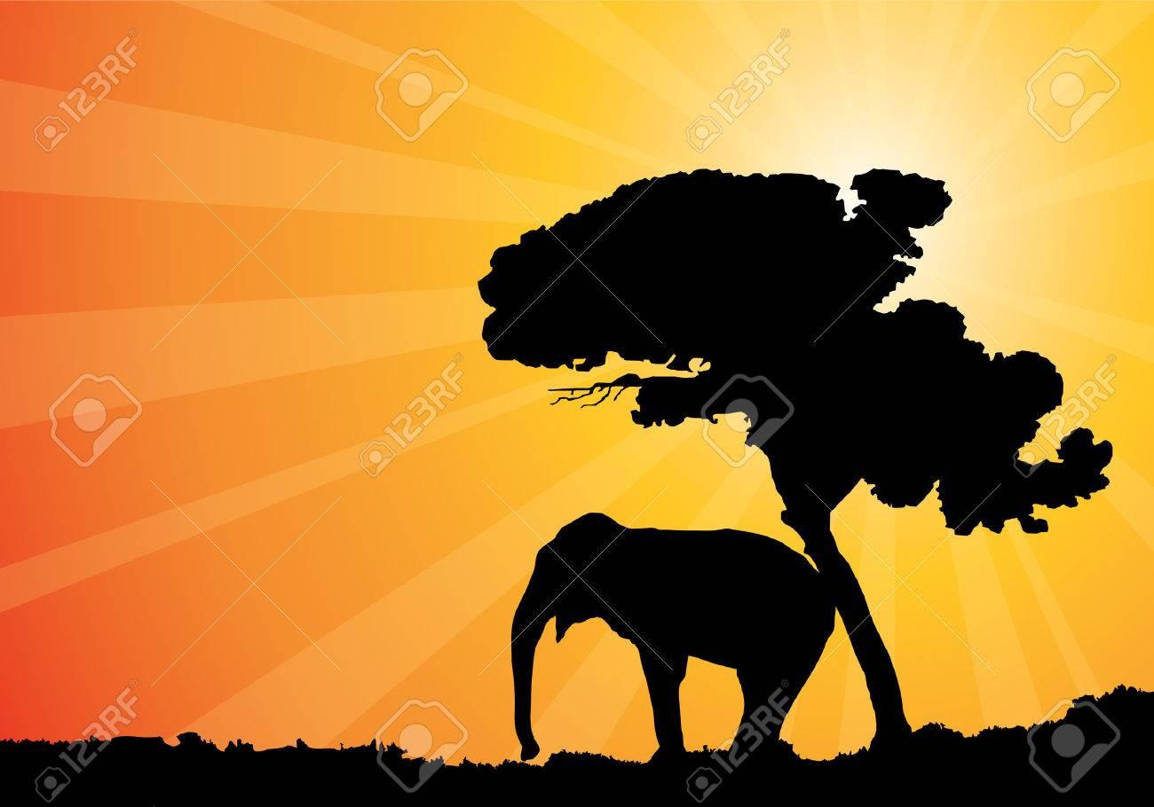 african sunshine, vector illustration Stock Vector - 3678769