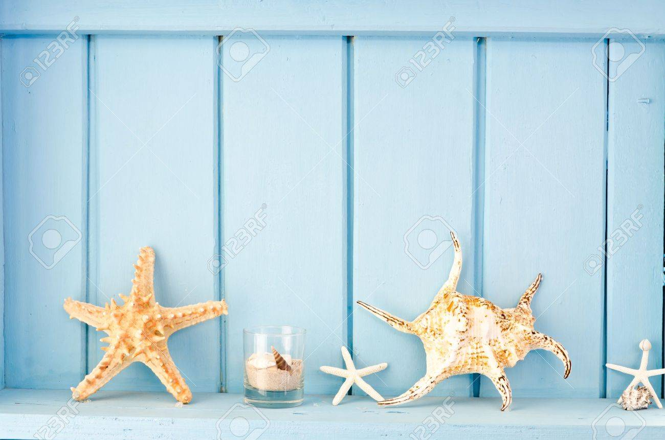 Blue wall decoration with shellfish, beach style decoration - 12411787