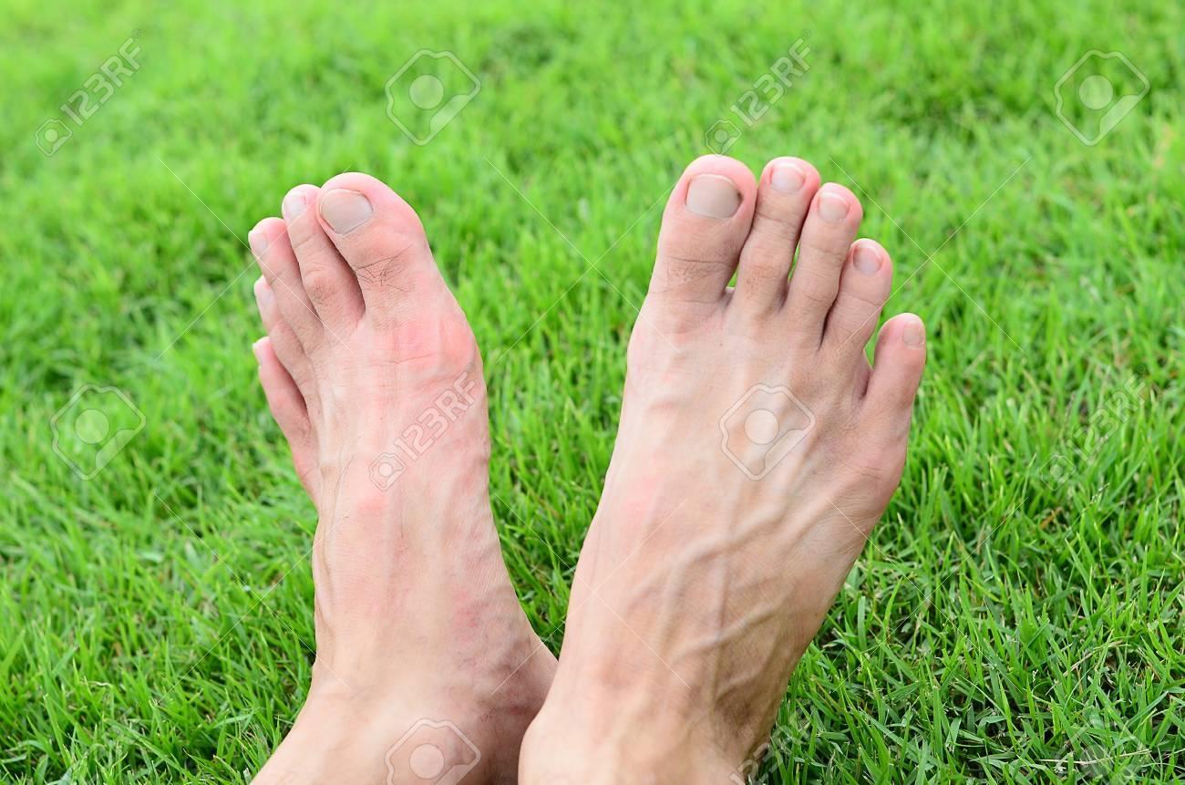Foot over green grass - 14508017