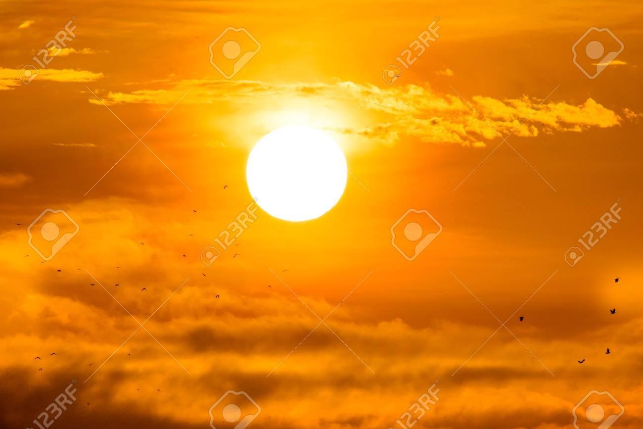 Rising sun with little birds. - 32488199