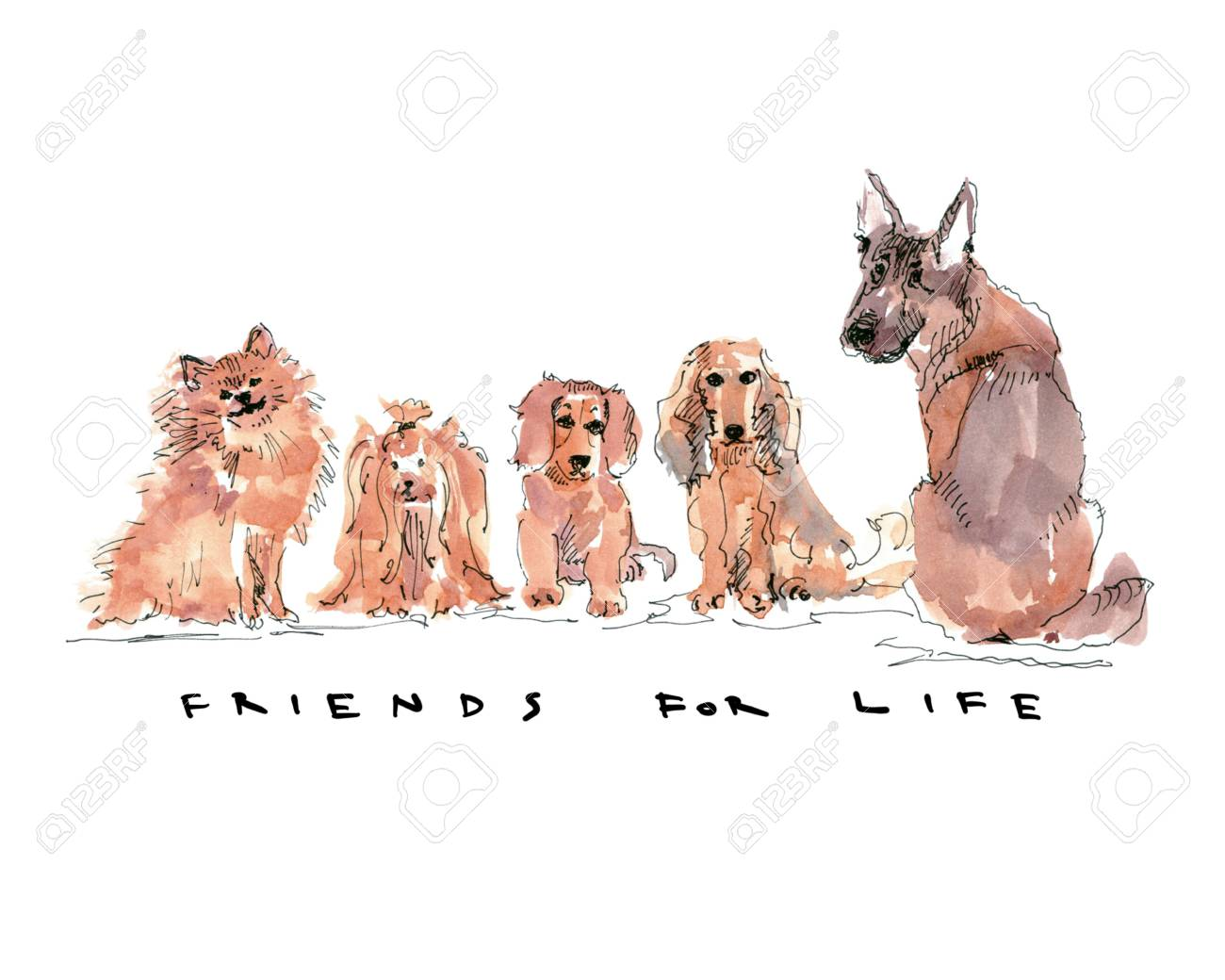 Dogs sitting in a row with text friends for life - 109991121