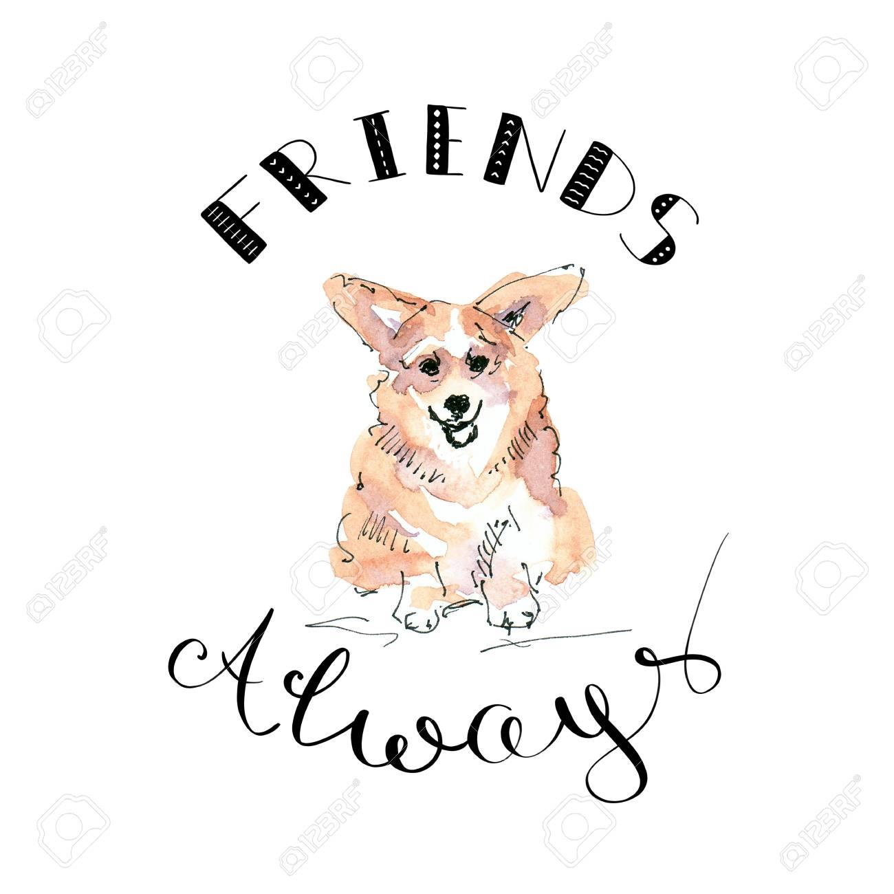 Illustration of Corgi dog with lettering friends always - 109991124