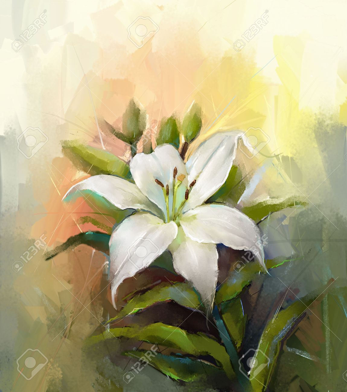White Lily Flowerflower Oil Painting Stock Photo Picture And