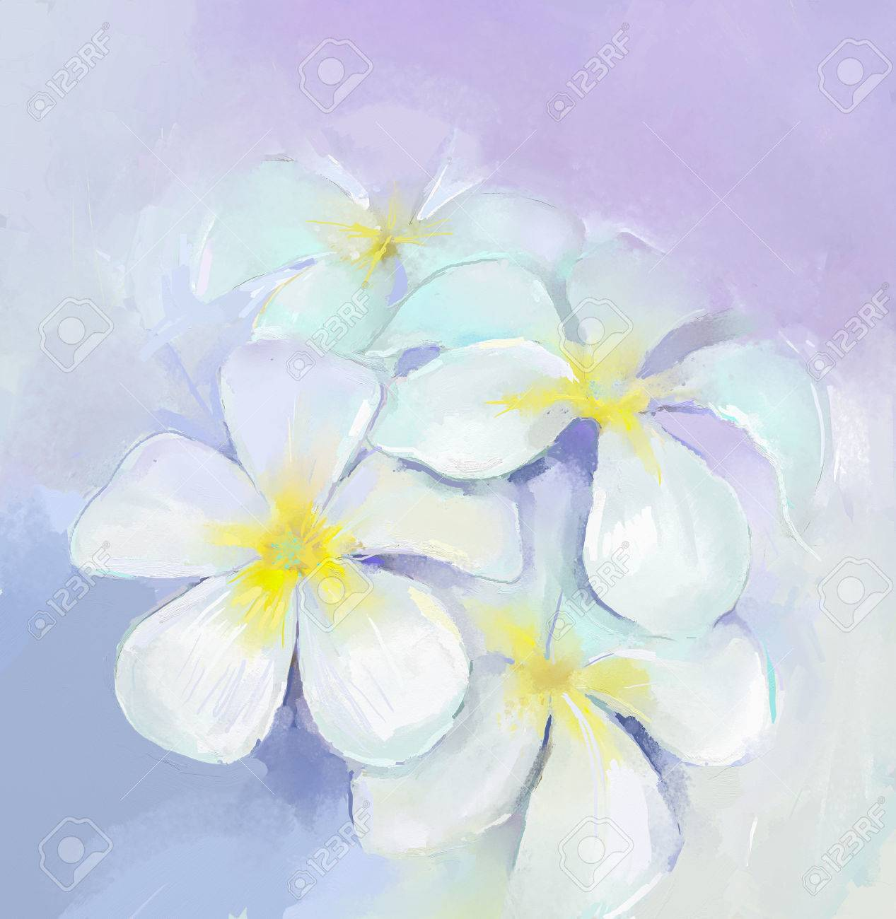 Plumeria frangipani oil paintingwhite flowers oil painting stock plumeria frangipani oil paintingwhite flowers oil painting stock photo 43543508 mightylinksfo Gallery