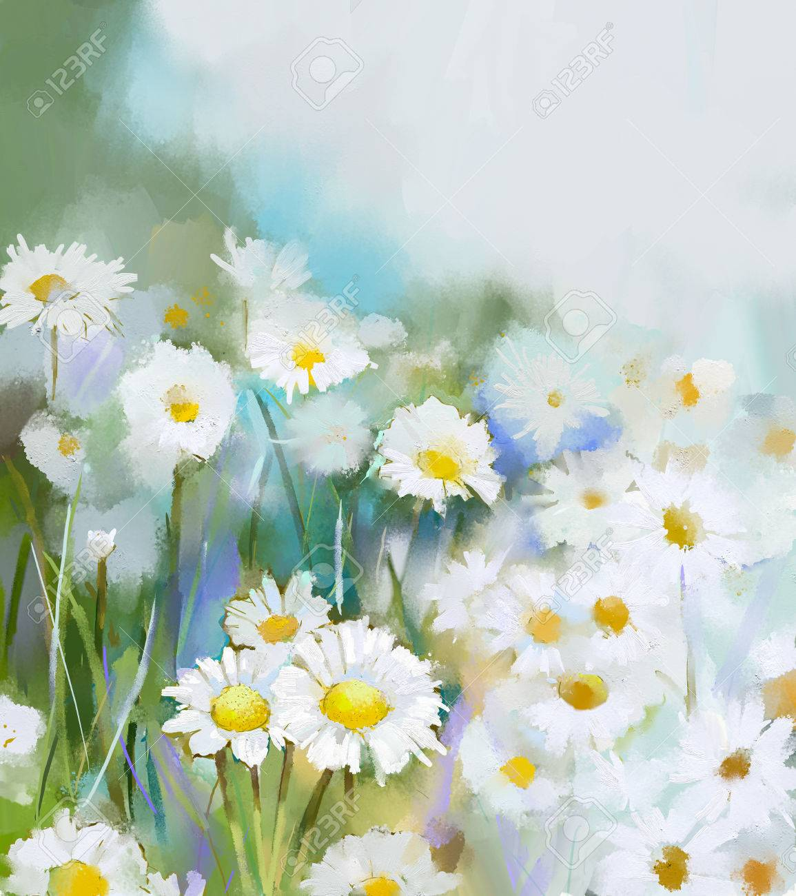 Oil painting daisy flowers in field hand paint white flowers oil painting daisy flowers in field hand paint white flowers daisy in soft color on mightylinksfo Gallery