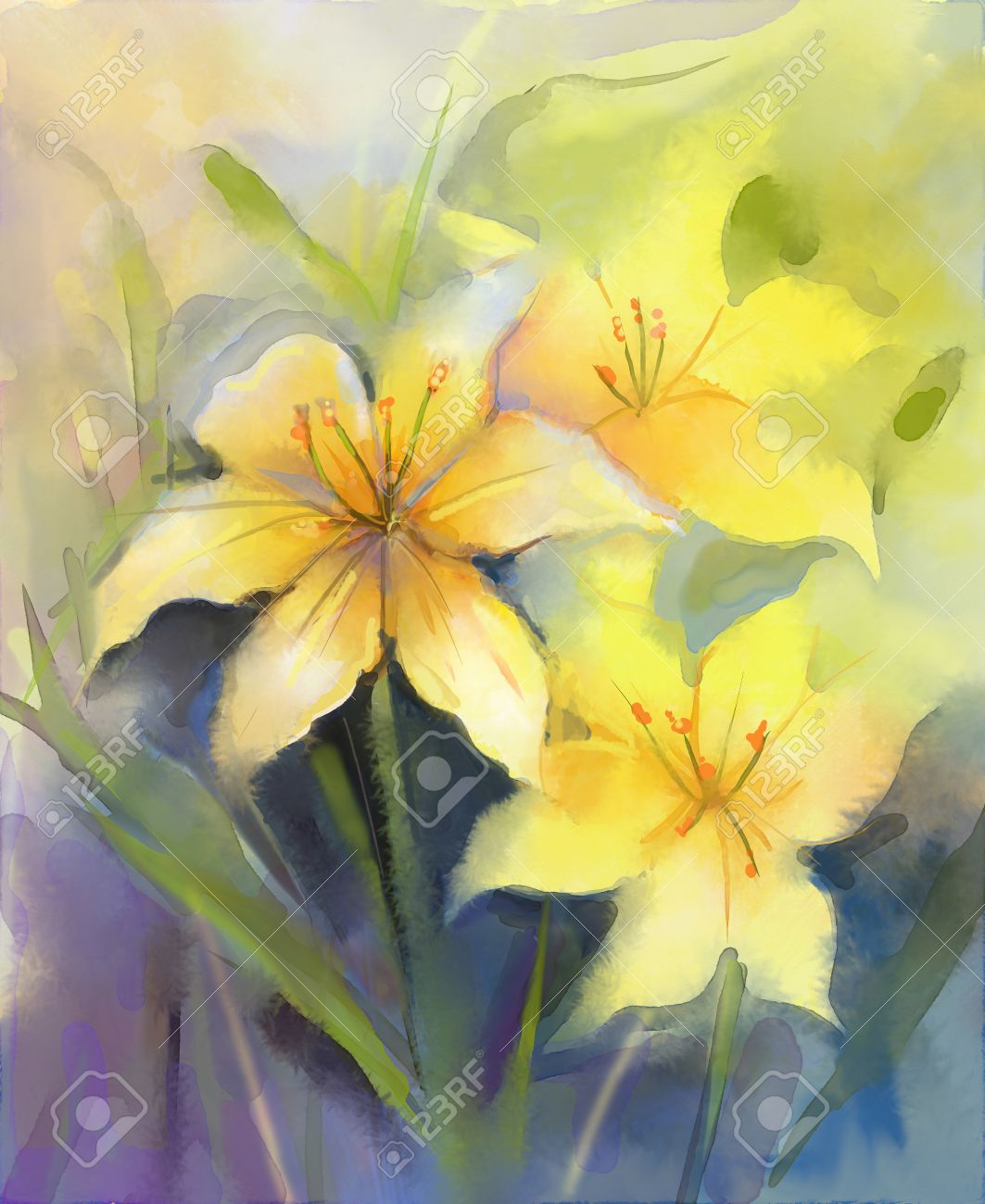Painting Color three yellow lily flower.watercolor painting floral,in soft color