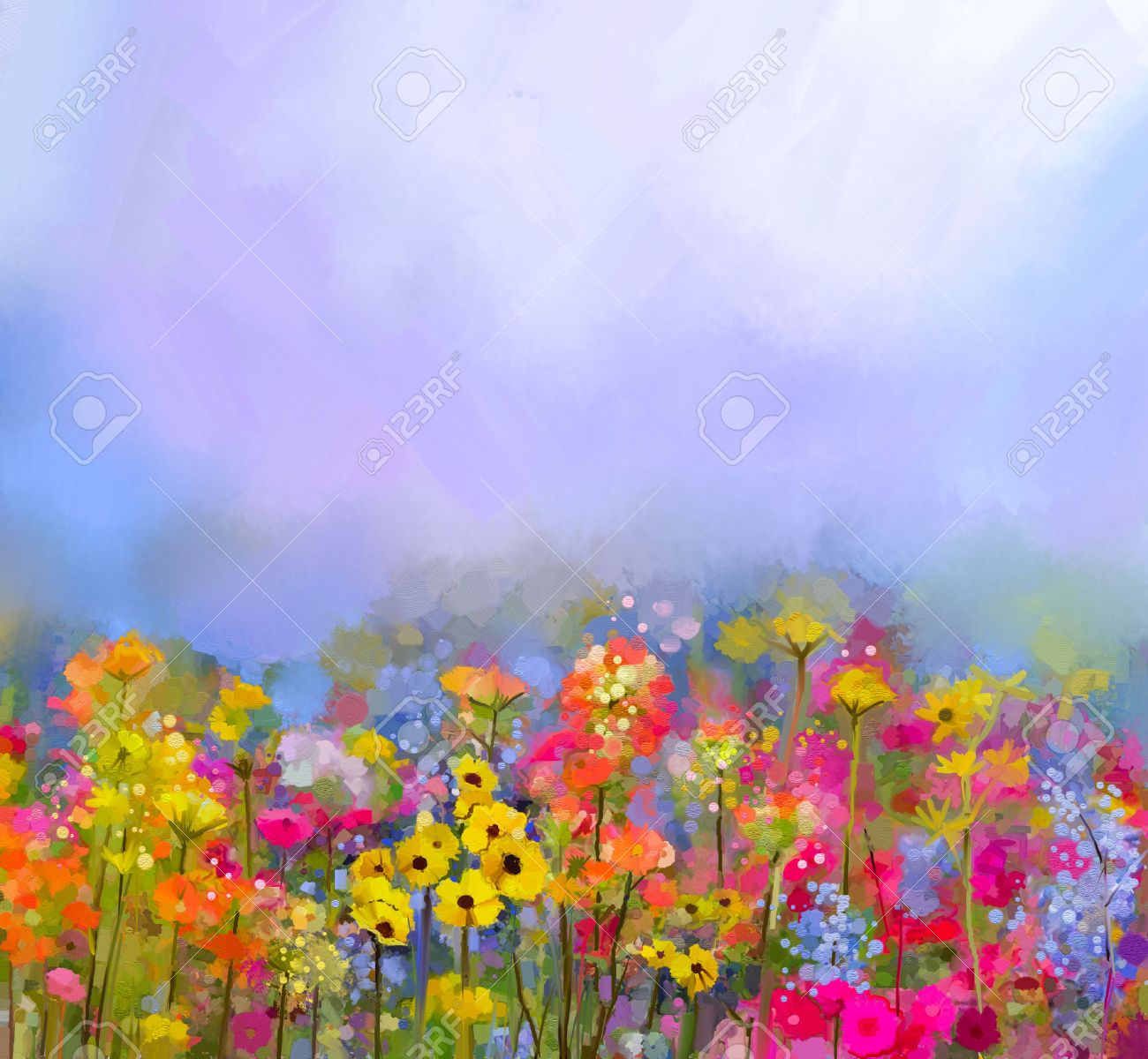 Colorful Daisies In A Field