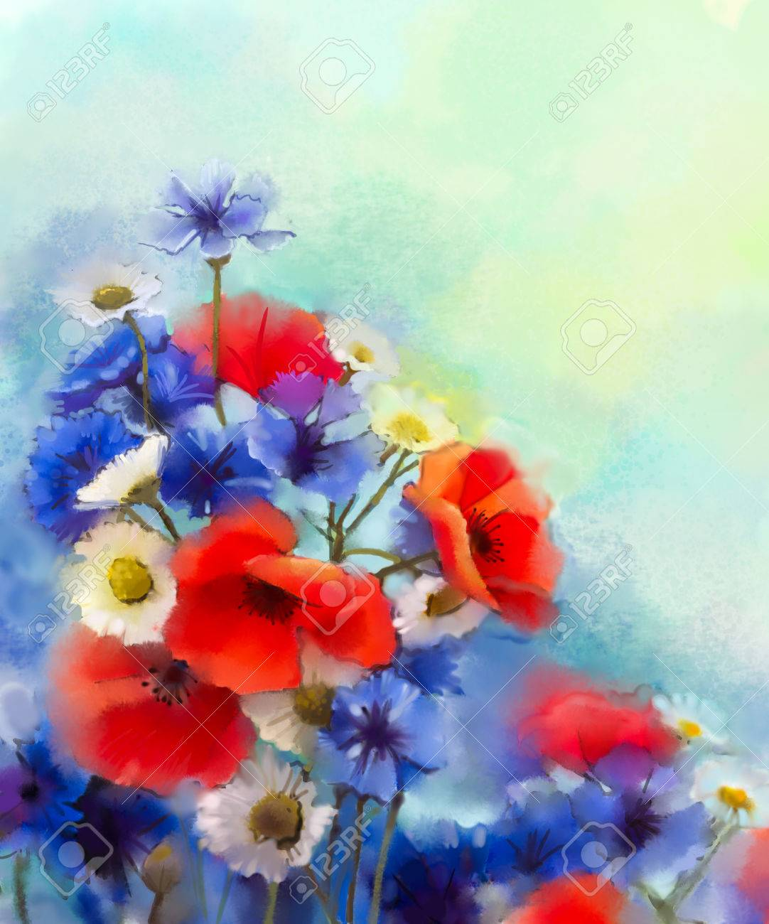 Watercolor Red Poppy Flowers, Blue Cornflower And White Daisy ...