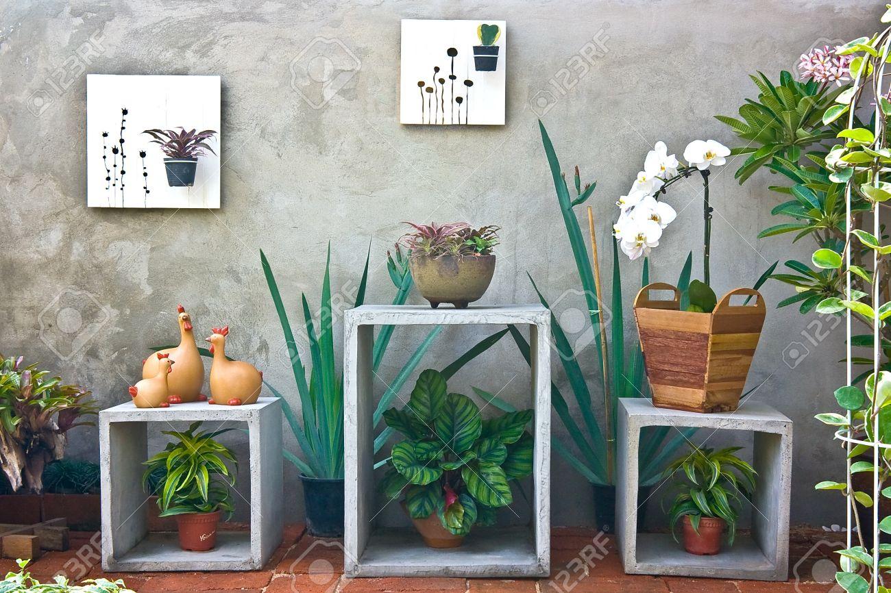 in un piccolo giardino dietro la casa foto royalty free, immagini ... - Piccolo Giardino In Casa