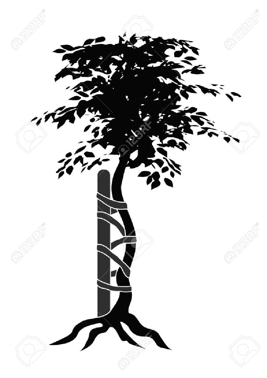 Illustration of the typical symbol for orthopedic medicals or doctors showing a buckled tree - 7025900