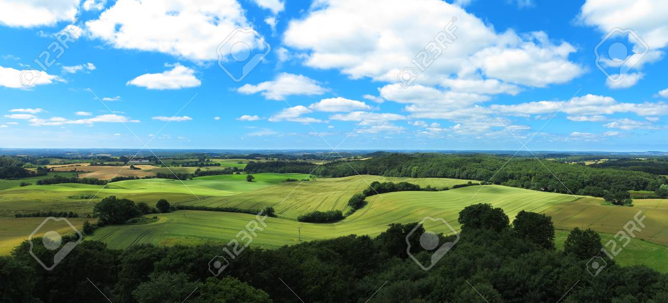 wavy fields in agricultural panoramic landscape