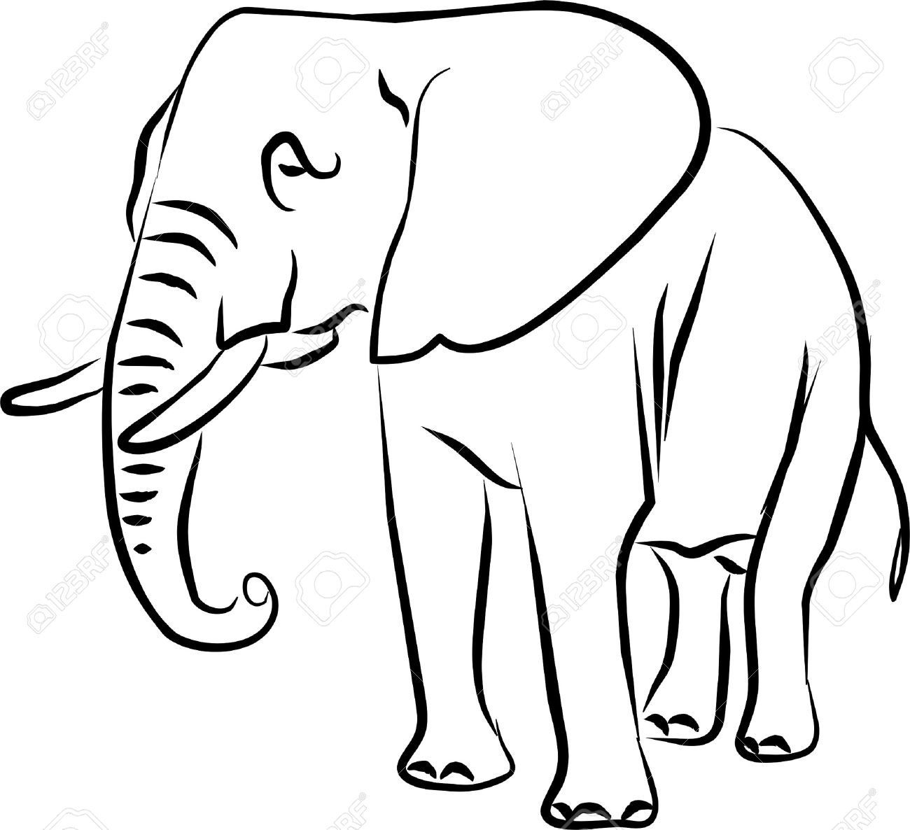 African Elephant Drawing Big Eared Black And White Royalty Free