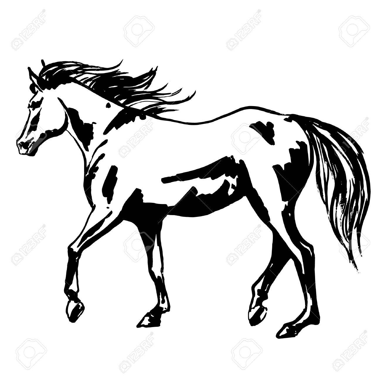 beautiful horse painted illustration walking purebred mare horse RE MAX Framingham MA beautiful horse painted illustration walking purebred mare horse with flowing silky mane and tail