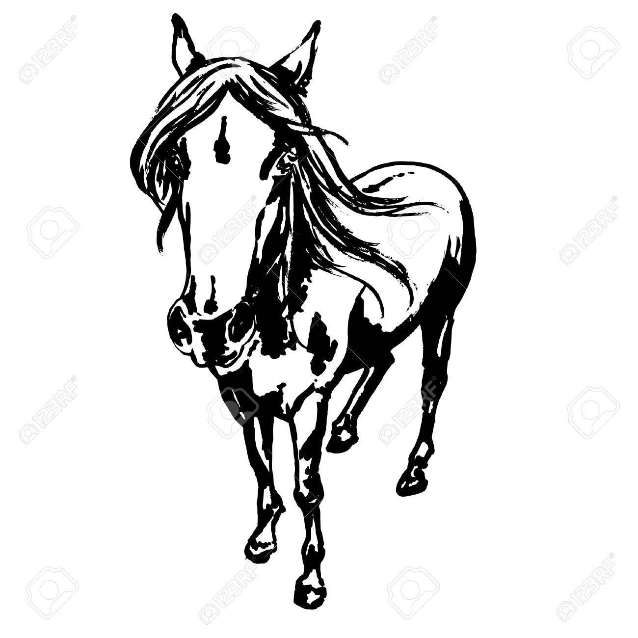 Cute Horse Portrait Ink Painted Illustration Of Beautiful Purebred Stock Photo Picture And Royalty Free Image Image 74052319