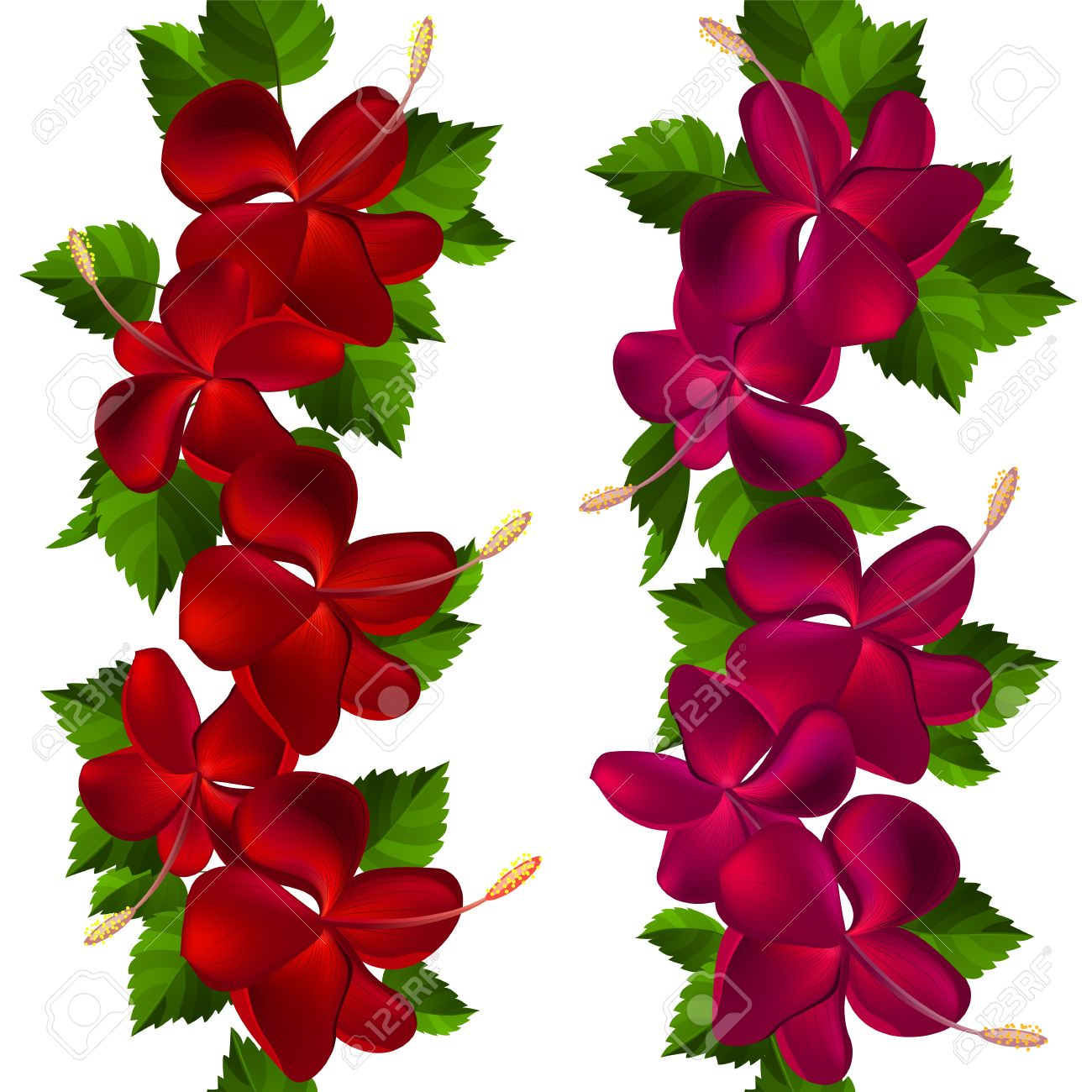 Samless Border Made Of Hibiscus Flowers Royalty Free Cliparts