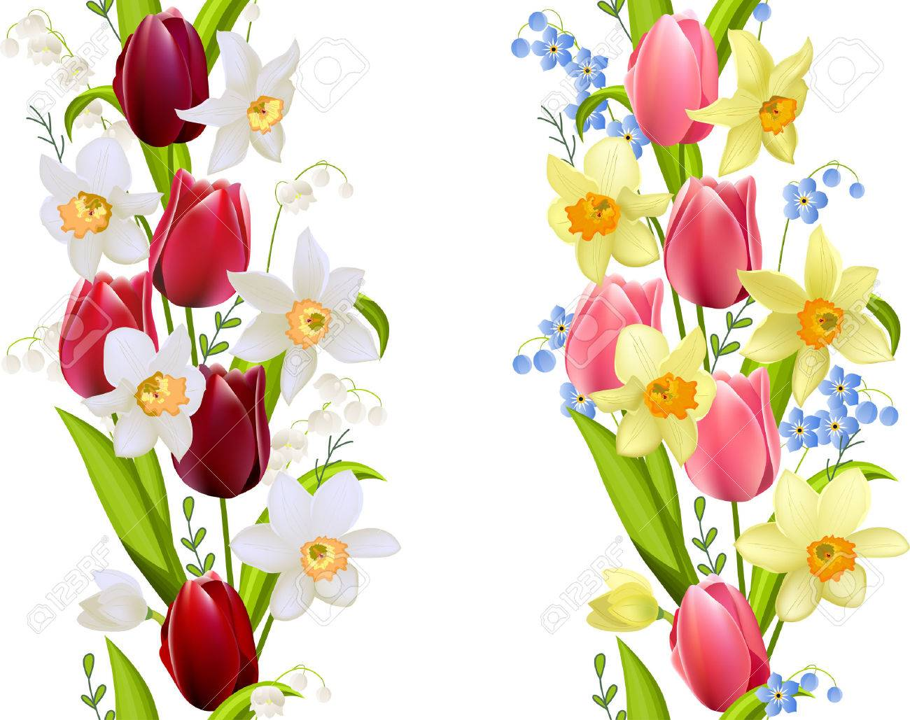Two Seamless Borders With Spring Flowers Tulips And Daffodils