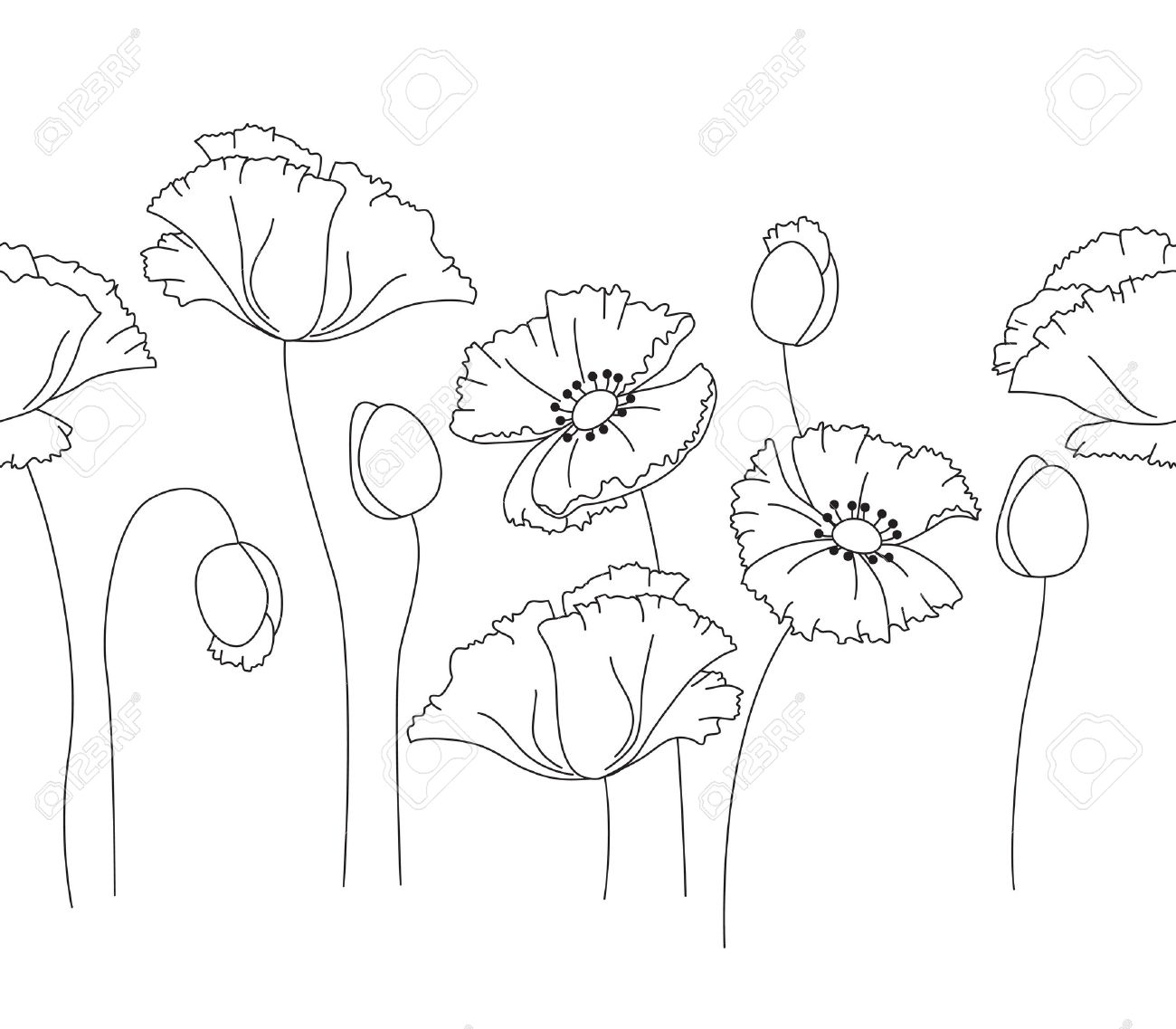 Vector Draw Picture Illustration Clip Art Element Design