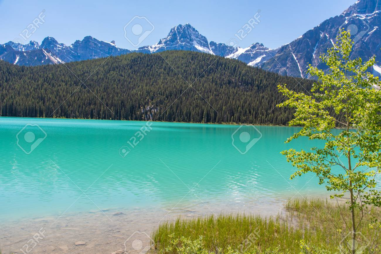 Canada forest landscape with lake and mountain in the background, Alberta. - 115023861