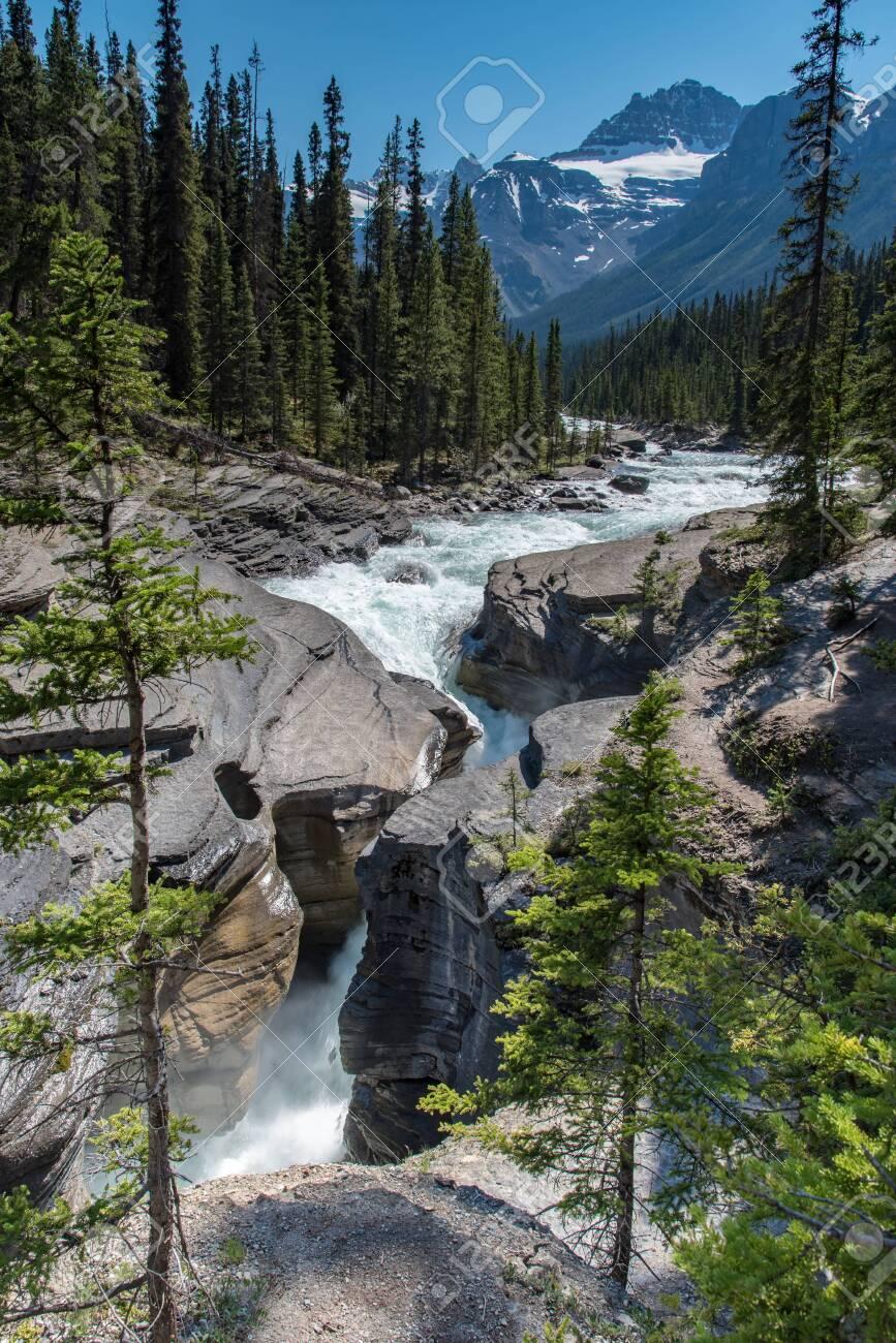 Mistaya Canyon in Summer sunny day,Alberta,Canada. - 115023870