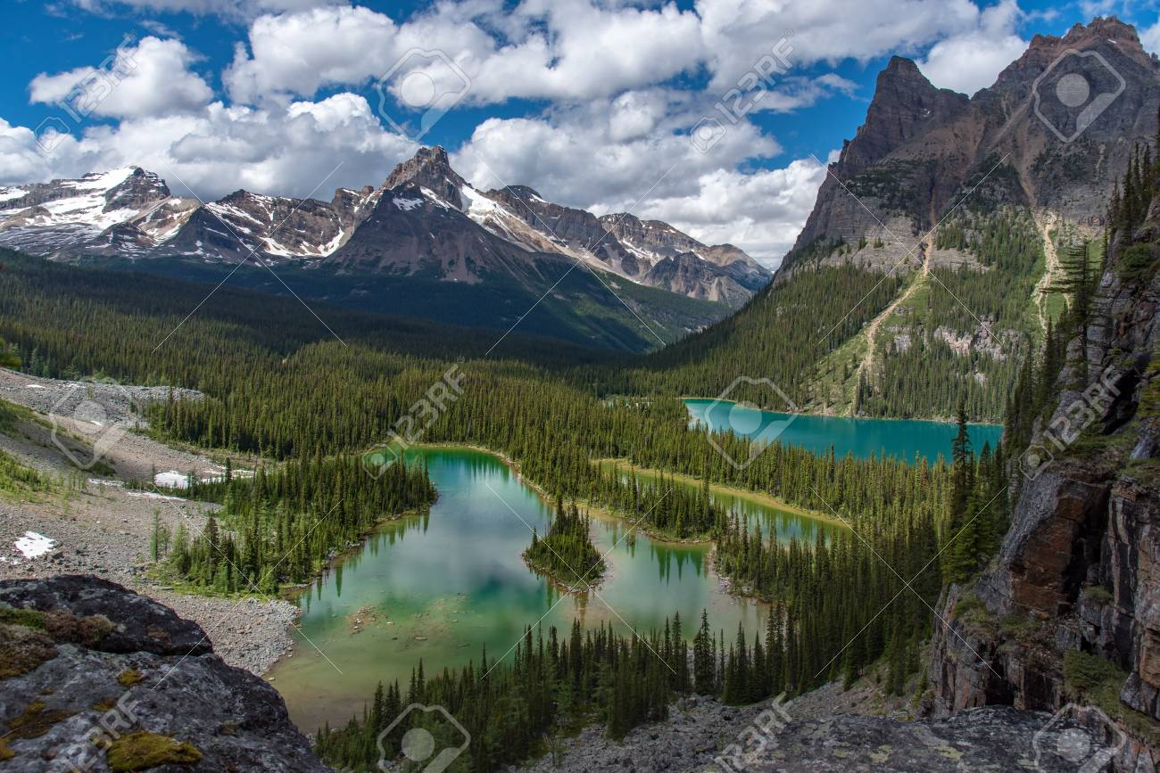 Opabin lake beautiful hiking trail in cloudy day in Spring, Yoho, Canada. - 115343558