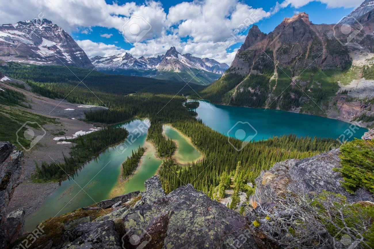 Opabin lake beautiful hiking trail in cloudy day in Spring, Yoho, Canada. - 115343600