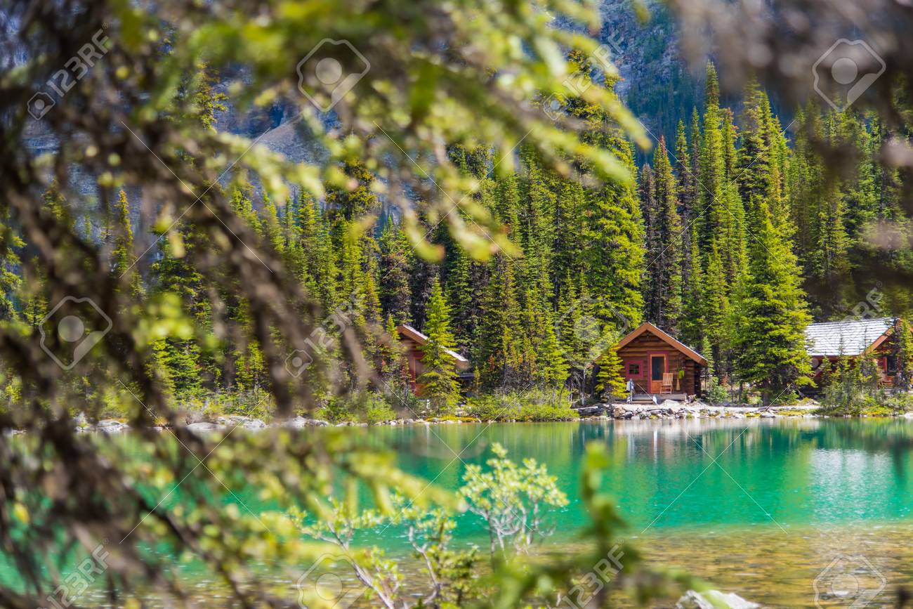 Cottages at Lake Ohara hiking trail in sunny day in Spring, Yoho, Canada. - 115503219