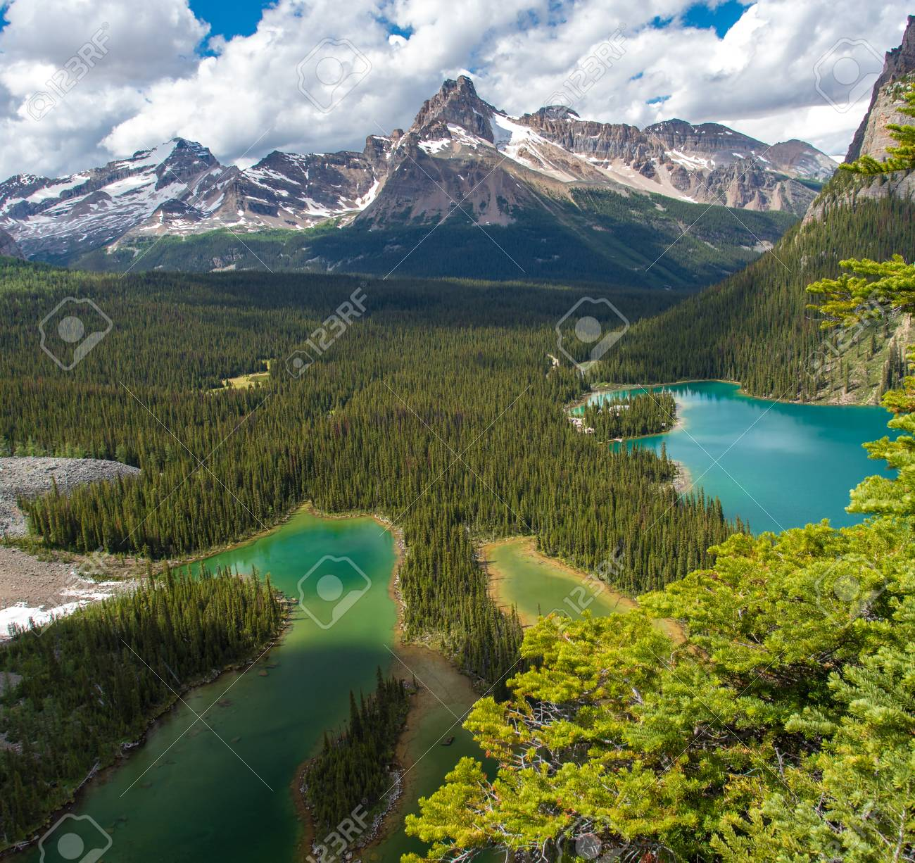Opabin lake beautiful hiking trail in cloudy day in Spring, Yoho, Canada. - 115503221