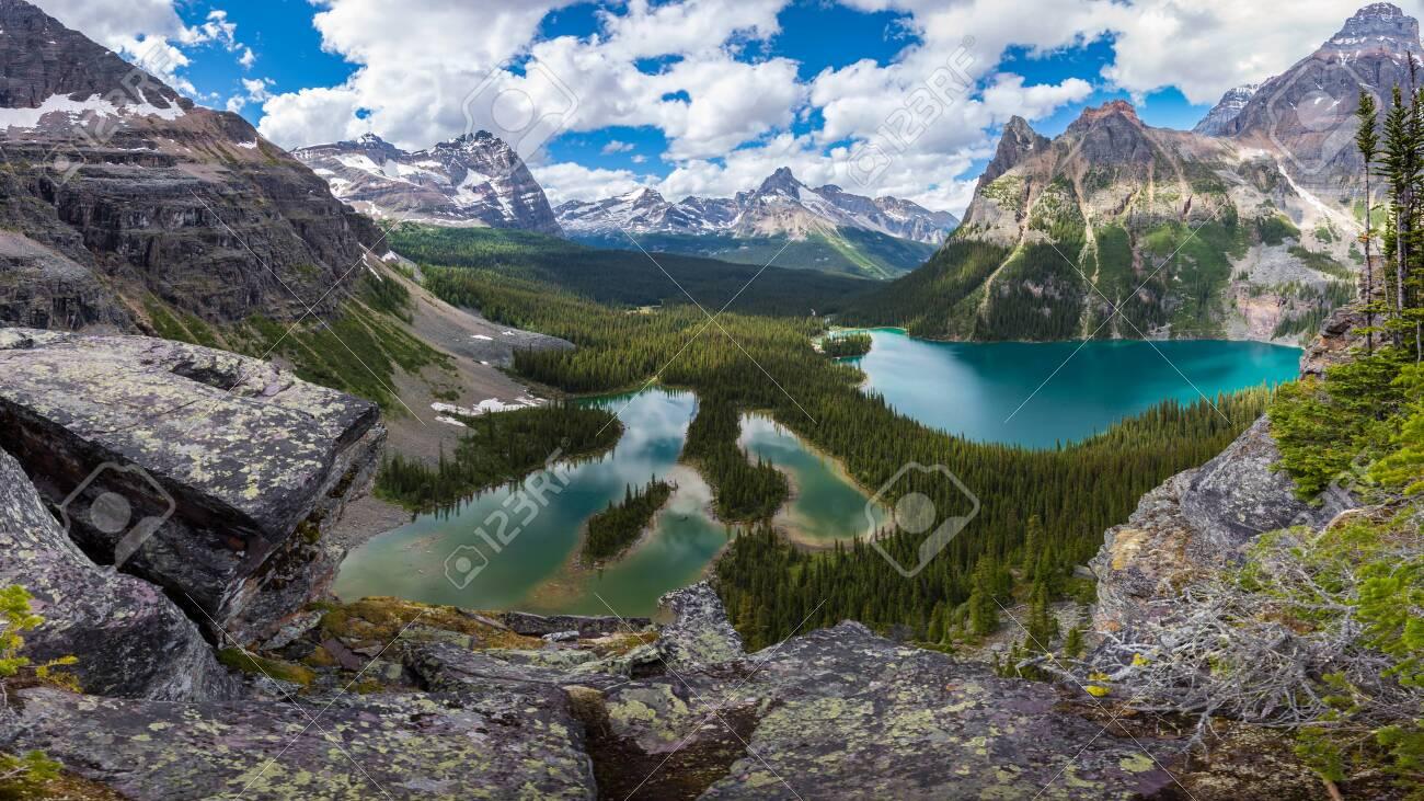 Opabin lake beautiful hiking trail in cloudy day in Spring, Yoho, Canada. - 115503222