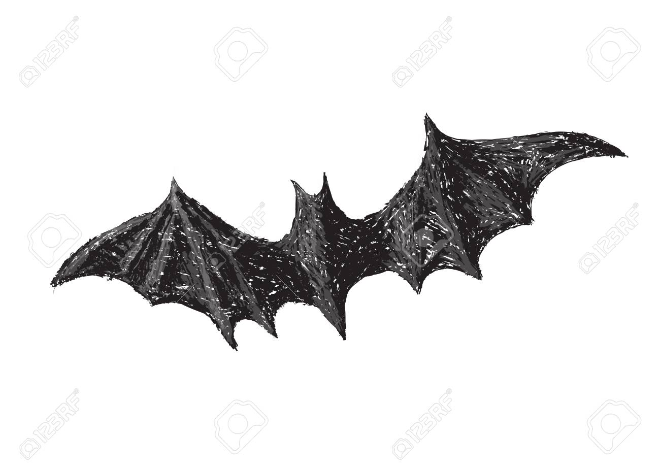 Hand drawn bat with open wings isolated on white background