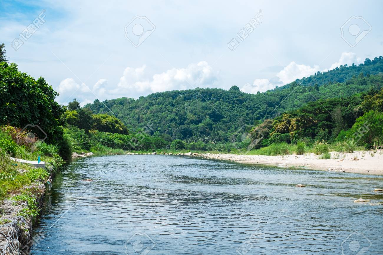 Nature Background Beautiful Forest River Landscape View With