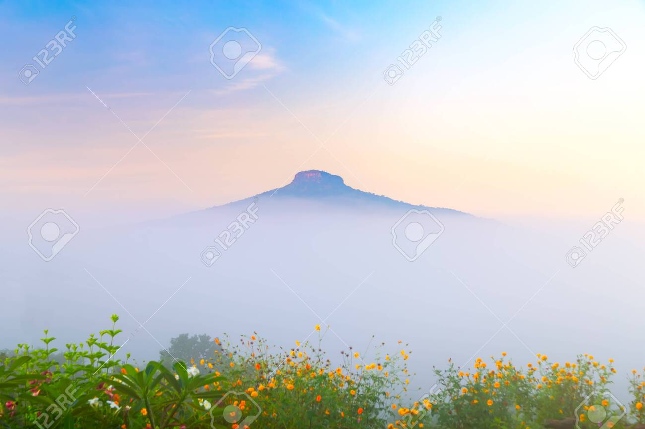 natural landscape for relaxing in Phu Luang, Loei Province thailand - 133602079