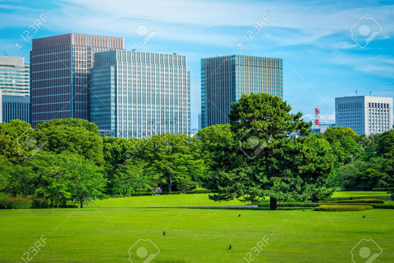 Modern Building With Green Zen Garden On Blue Sky Background In Tokyo,  Japan. Stock