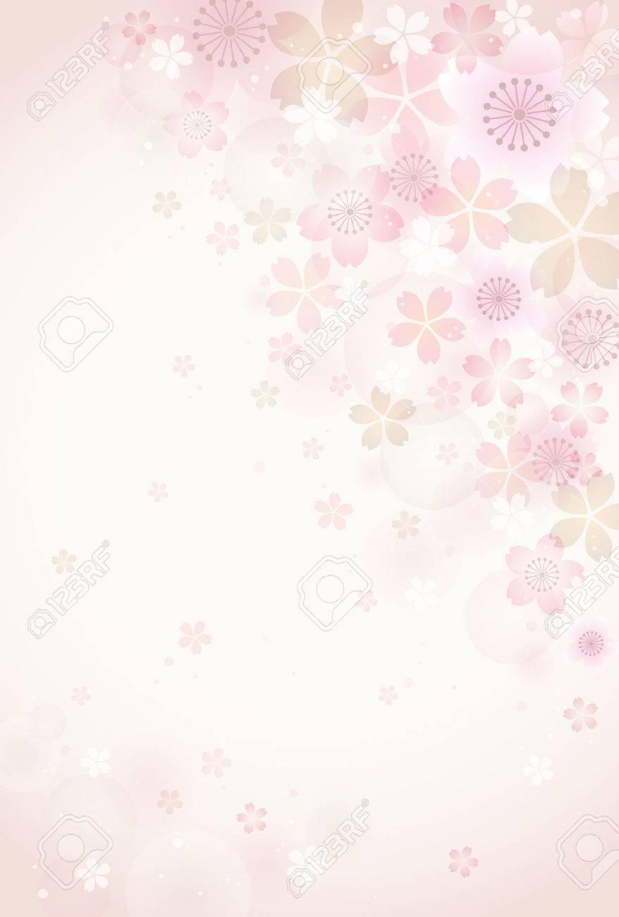Sakura blossoms background - 50246104