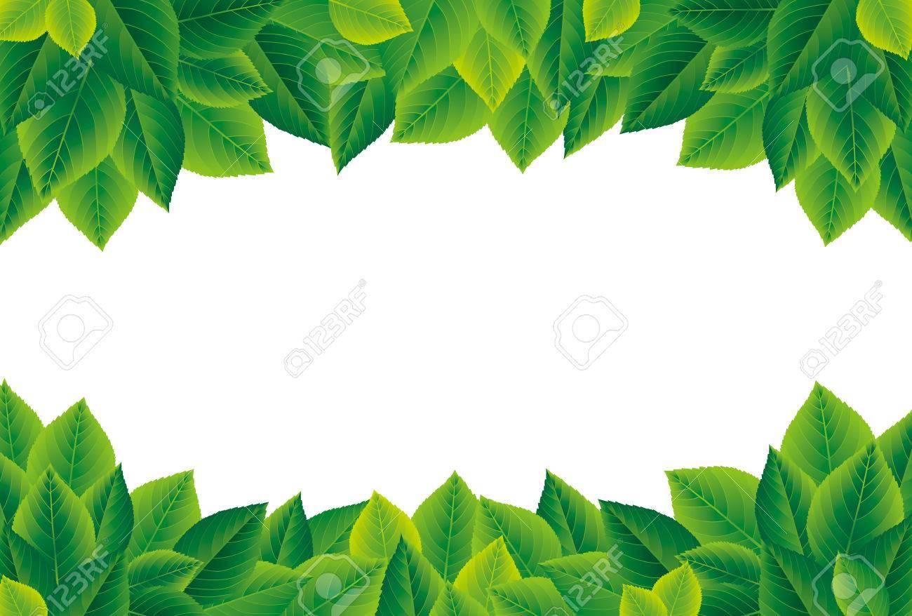 Green leaves frame - 50246116