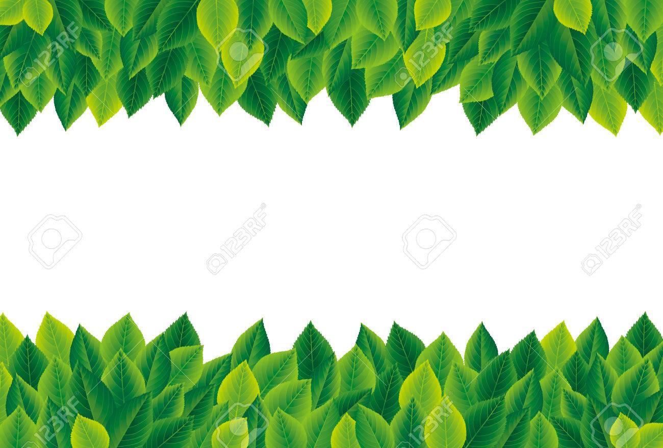 Green leaves frame - 50246124