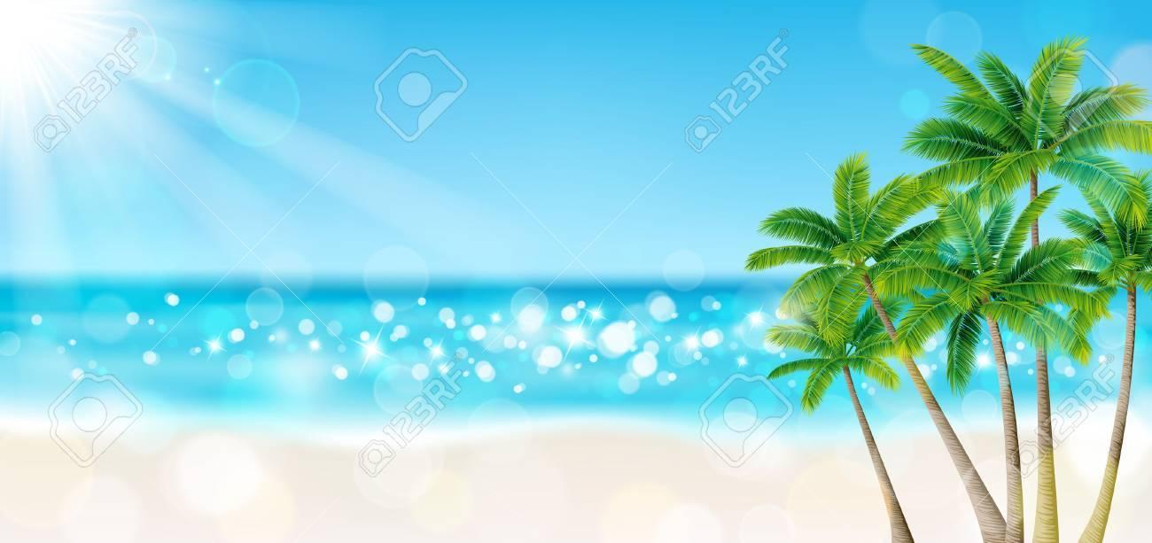 Palm trees on the beach - 57937408