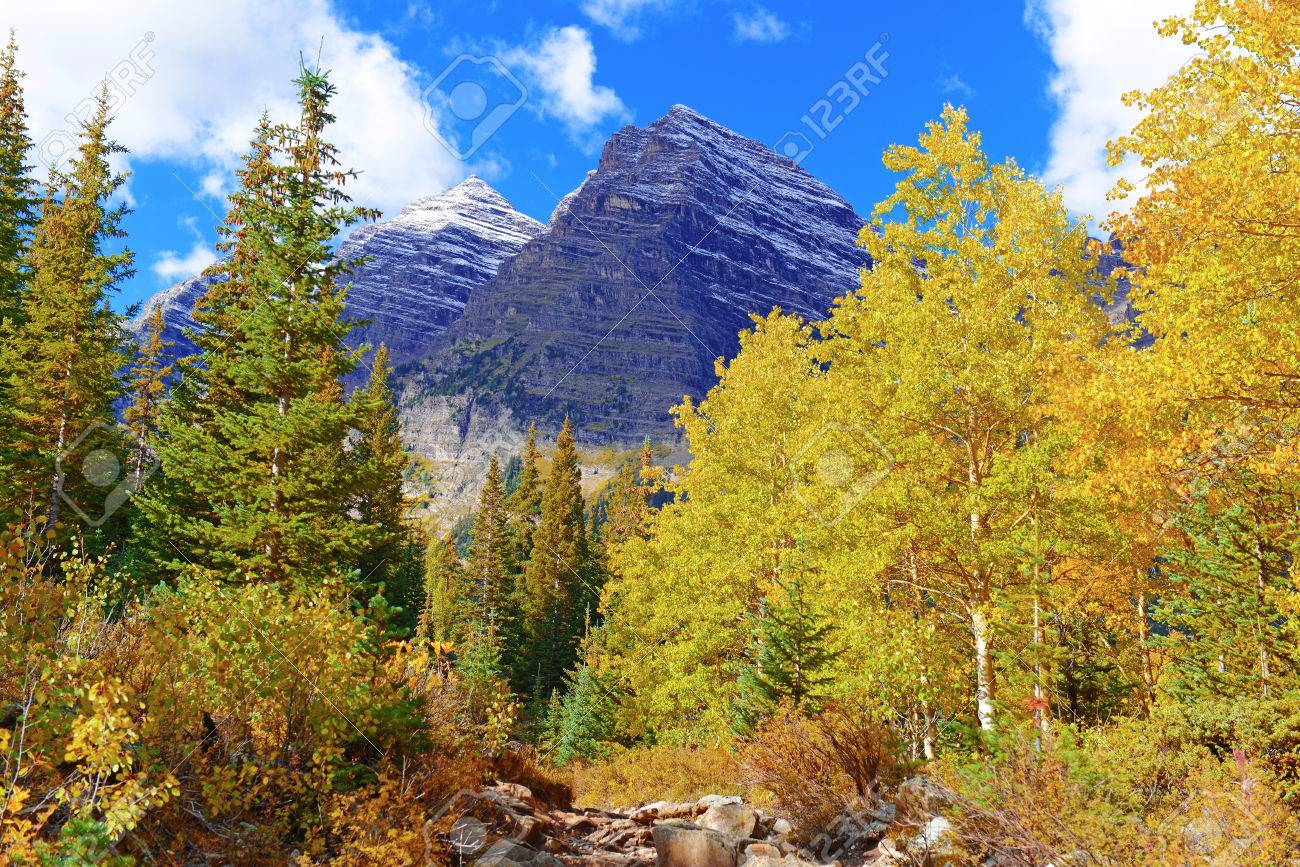 Fall foliage with aspen trees maroon bells colorado rocky fall foliage with aspen trees maroon bells colorado rocky mountains stock photo 28858755 sciox Choice Image