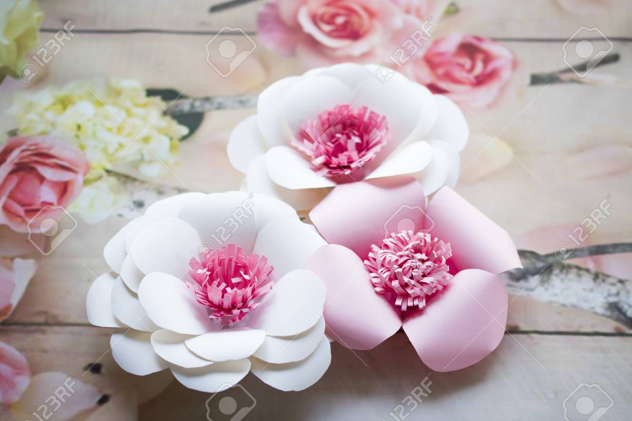 Paper flowers are perfect for bringing spring inside any time paper flowers are perfect for bringing spring inside any time of the year they mightylinksfo