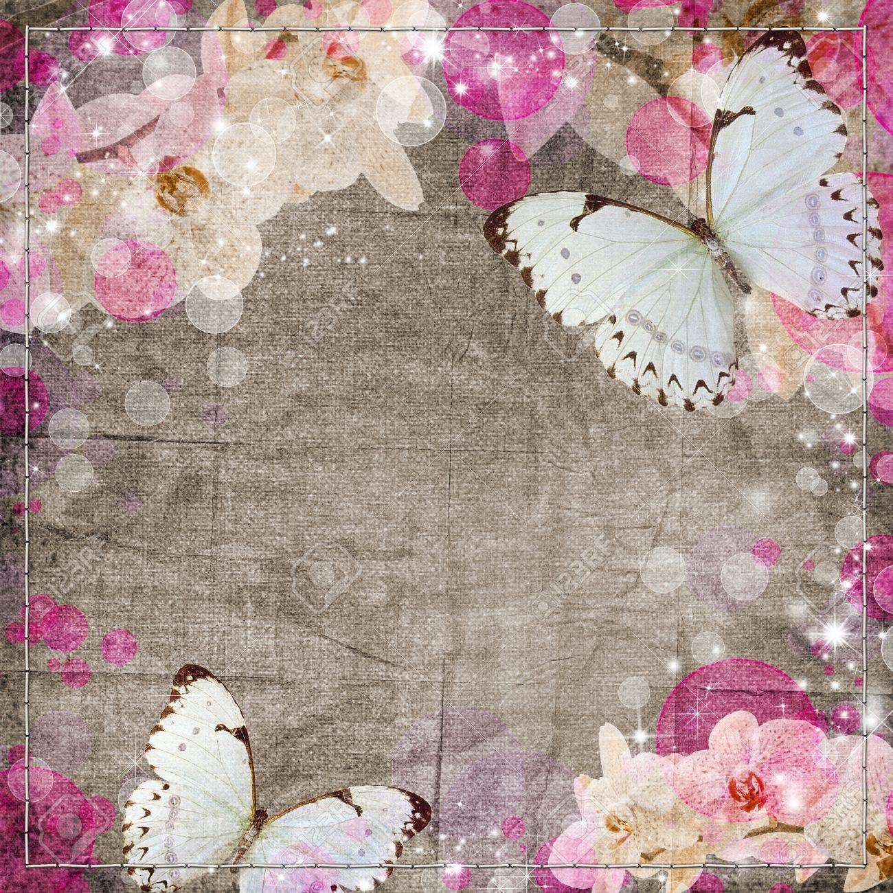 Butterflies and orchids flowers beige background Stock Photo - 12148530